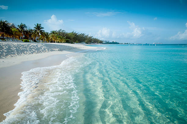paradise beach on a tropical island - aruba stockfoto's en -beelden