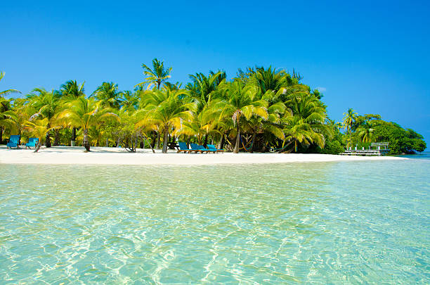 Paradise Beach on beautiful island South Water Caye - Belize stock photo