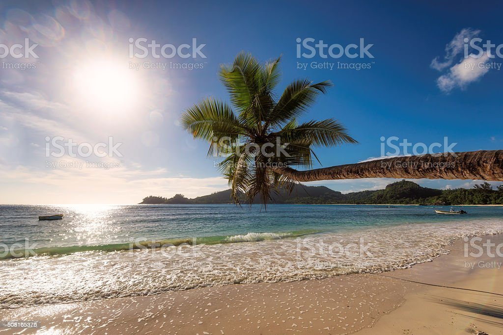 Paradise beach on tropical island Mahe at sunset in Seychelles stock photo