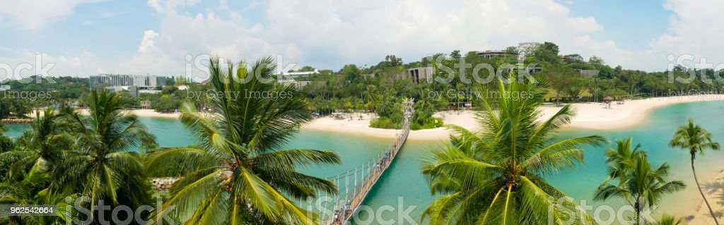 paradise beach panorama with blue water and palm trees - Royalty-free Angle Stock Photo