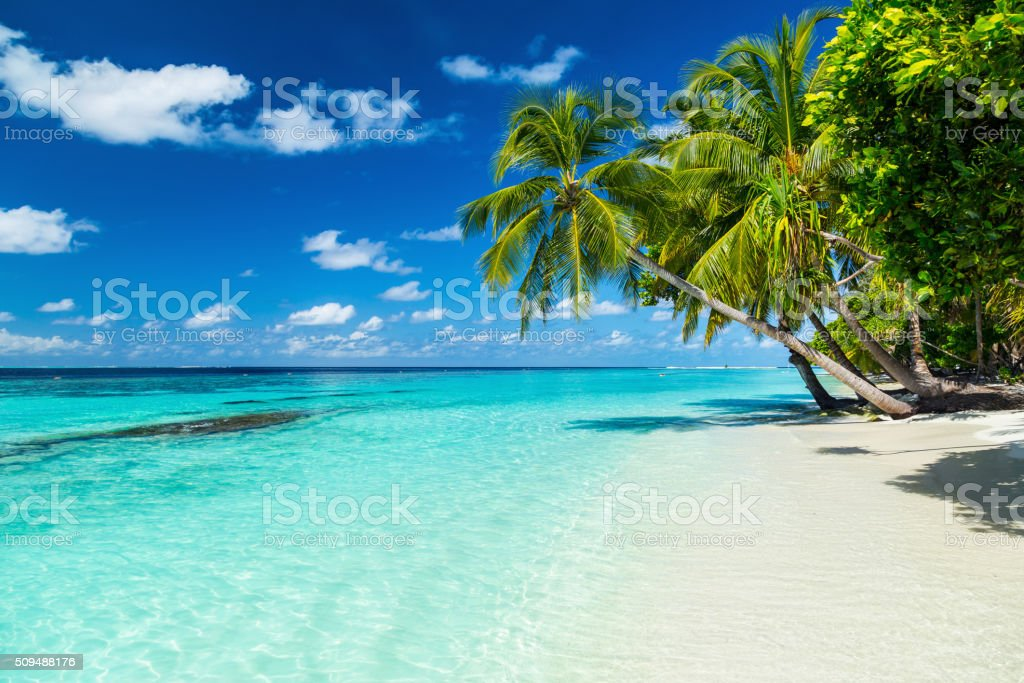 paradise beach photo libre de droits