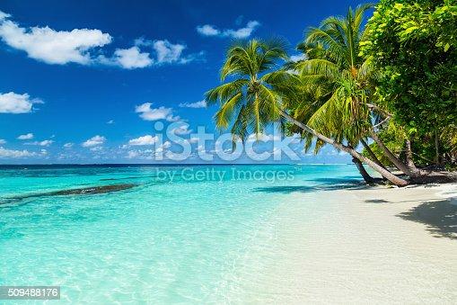 istock paradise beach 509488176