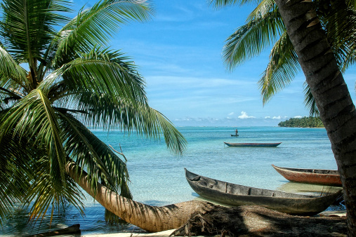 istock Paradise beach with canoes and palm tree 470357709