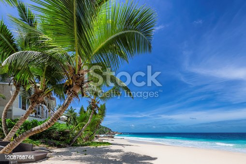 istock Paradise Caribbean beach with coco palms 1208758744