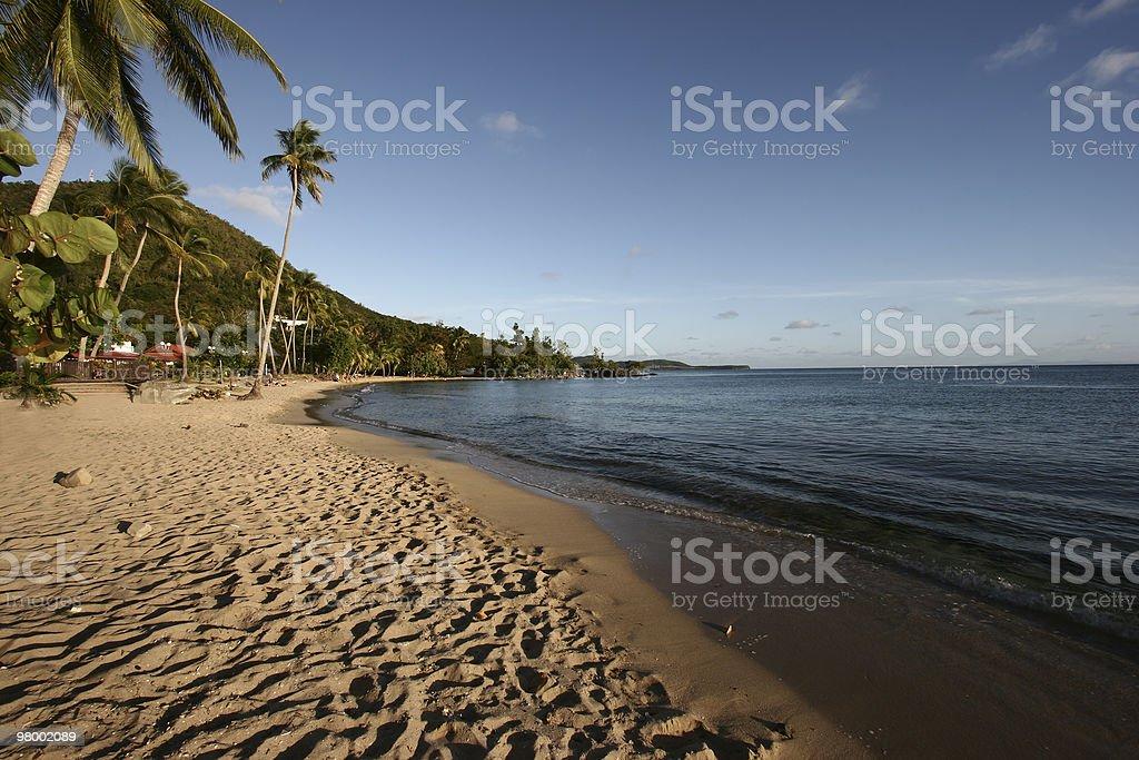 Paradise carribean beach royalty-free stock photo