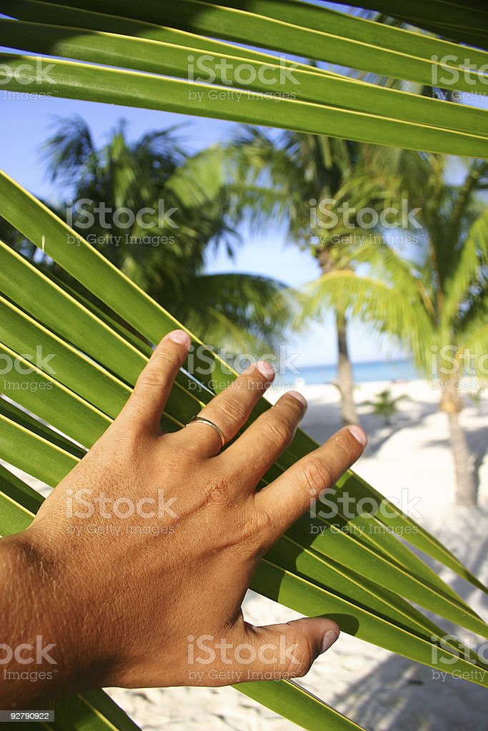 Paradise Discovered royalty-free stock photo