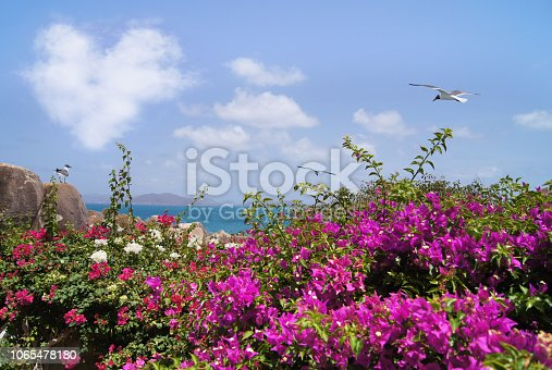 istock Paradise, idyllic background or water and blue sky with heart shaped cloud and seagulls 1065478180