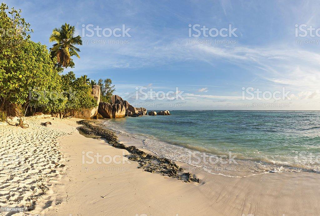 Paradise island beach tropical ocean palms royalty-free stock photo