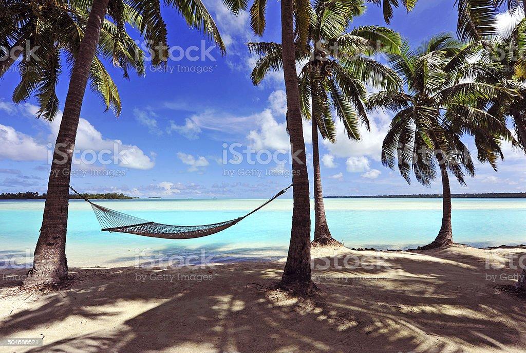 Paradise Island Hammock stock photo