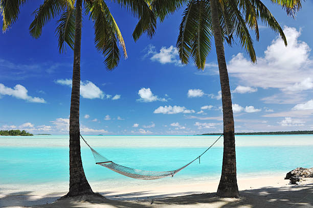 Paradise Lagoon A Hammock hanging from palm trees, the shade of Coconut Palms beside a perfect turquoise lagoon beach ocean on a paradise vacation  south pacific ocean stock pictures, royalty-free photos & images