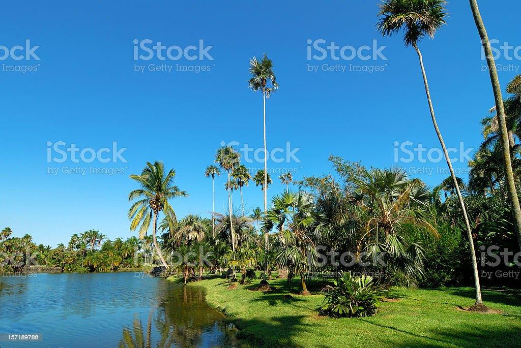 paradise on earth stock photo