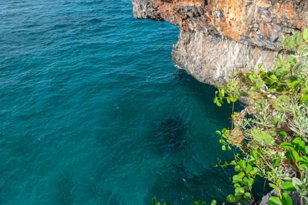 Paradise on the Atlantic Ocean stock photo