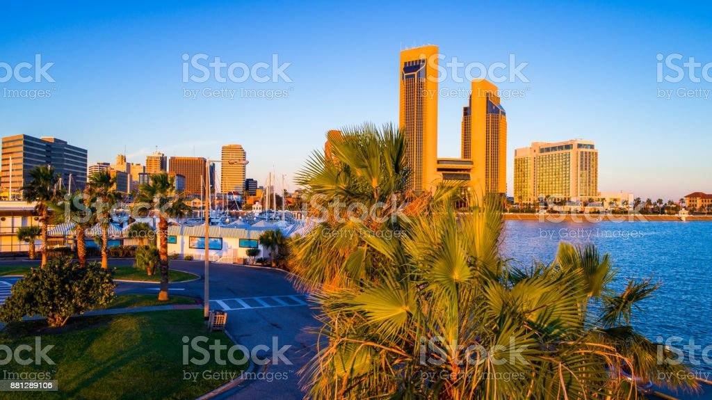 Paradise palm Trees and golden towers along Corpus Christi , TX Bayfront at sunrise stock photo