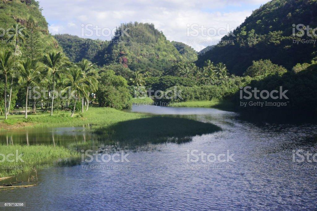 Paradise 免版稅 stock photo