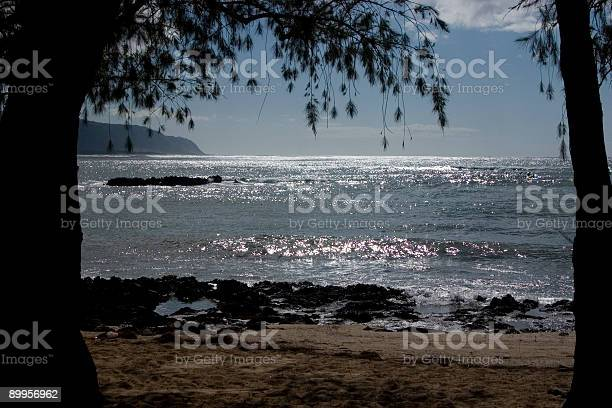 Paradise Stock Photo - Download Image Now