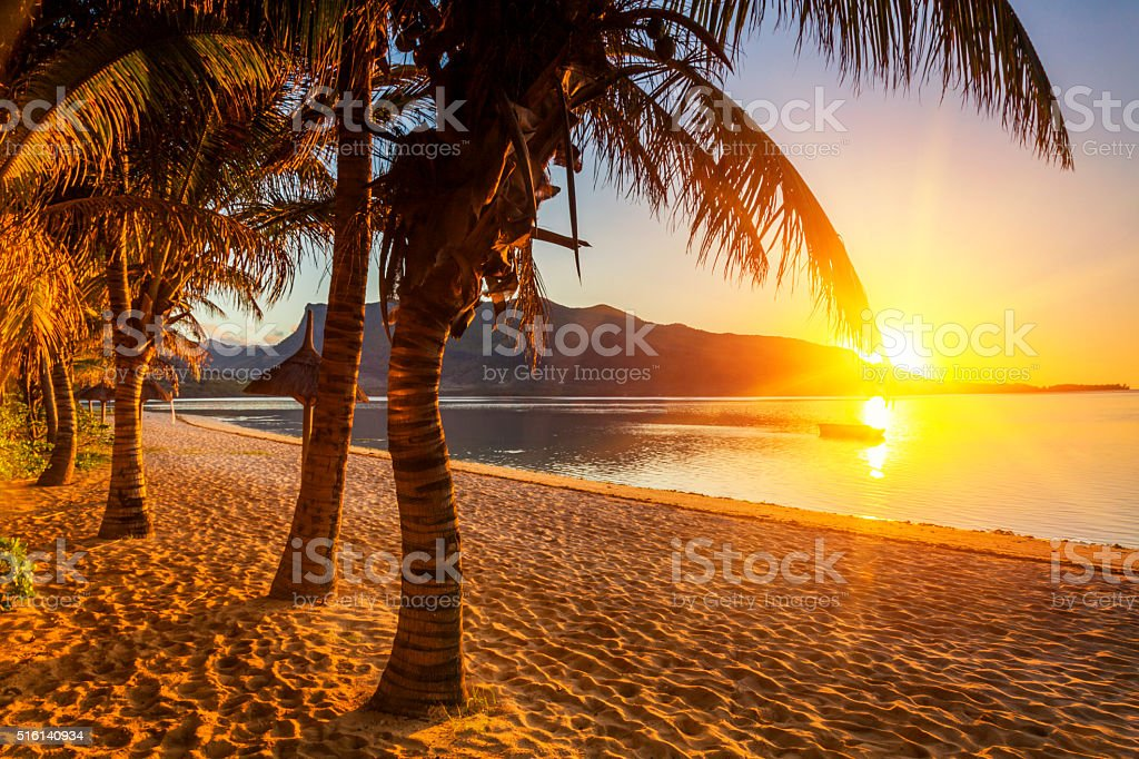 Paradise sandy beach with palm trees and mountains at sunset. stock photo