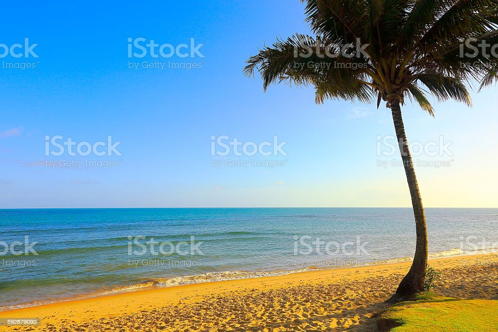 Paradise: Trancoso idyllic Tropical beach, Bahia state, Northeastern Brazil stock photo