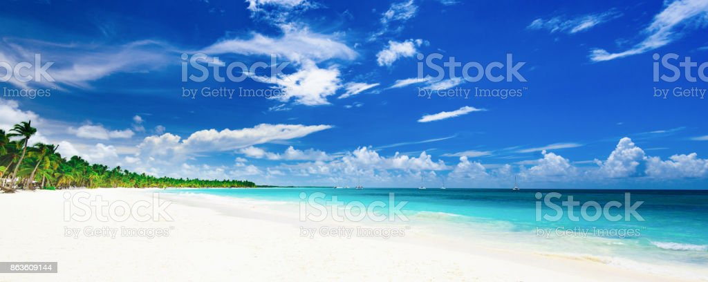 Explore The Beauty Of Caribbean: Paradise Tropical Beach Palm The Caribbean Sea Stock Photo