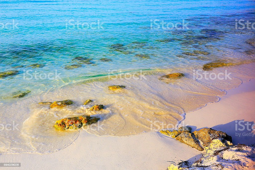 Paradise: tropical Idyllic Sandy beach, Saona Island, Dominican Republic stock photo