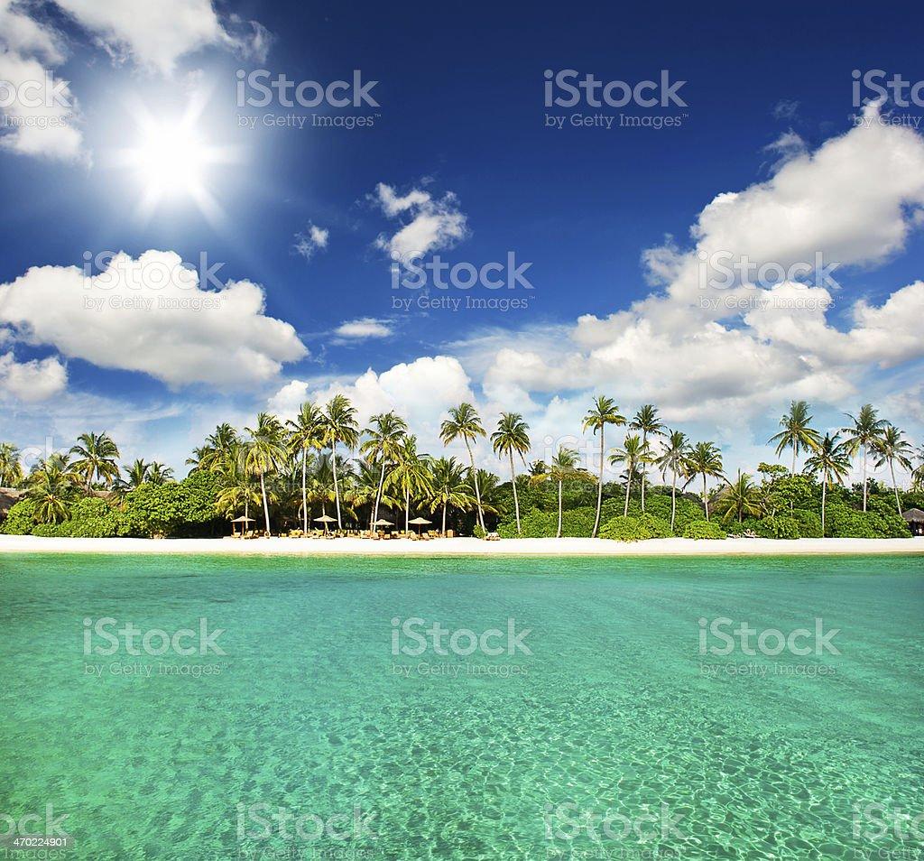 paradise tropical island beach with perfect sunny sky stock photo