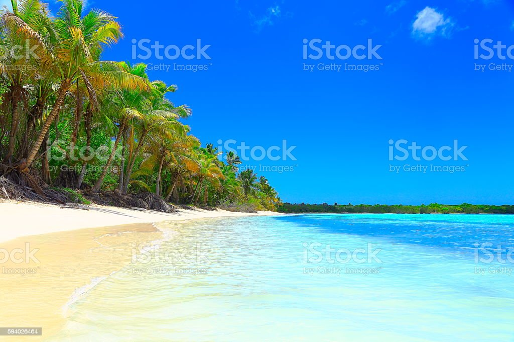 Paradise: tropical Sandy beach, Palm trees. Saona Island, Dominican Republic stock photo
