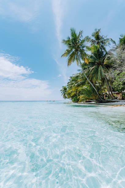 Paradisiac beach at Maldives stock photo