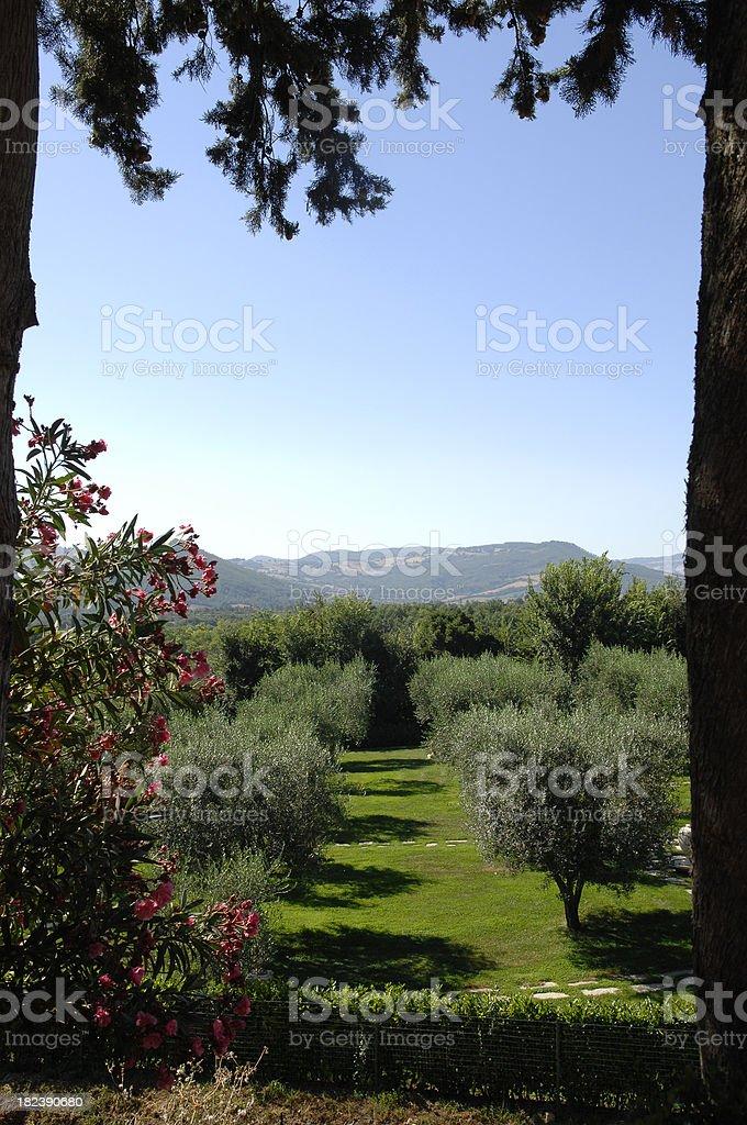 Paradisiac garden in Tuscany - Sovana royalty-free stock photo