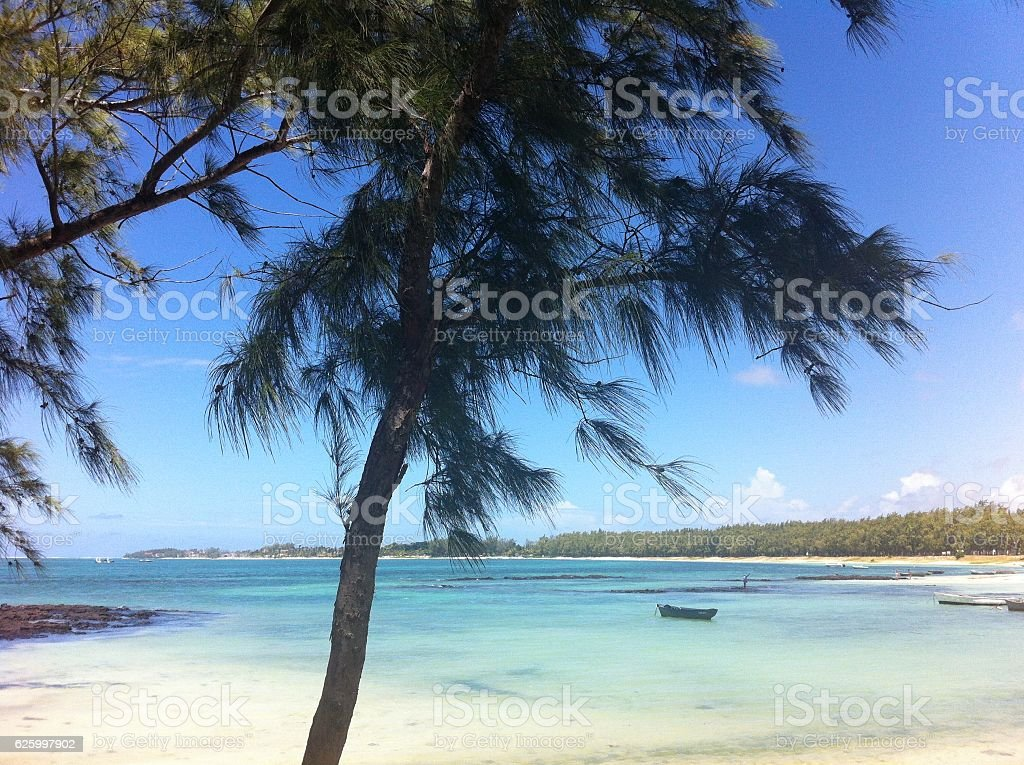 Paradisiac island and turquoise sea with white sand stock photo