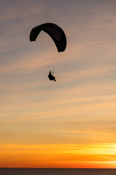 Paragliding at the Black beach, San Diego stock photo