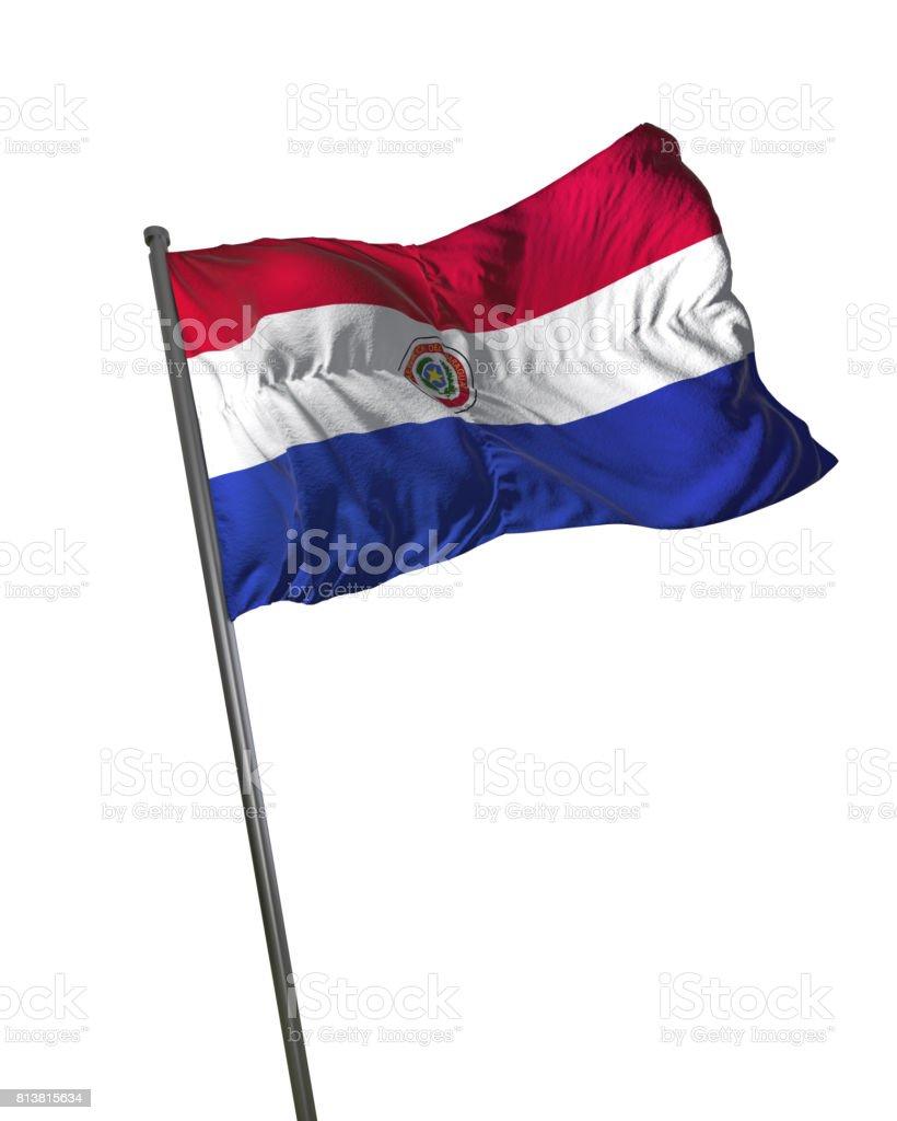 Bandera de Paraguay ondeando aislado en fondo blanco retrato - foto de stock