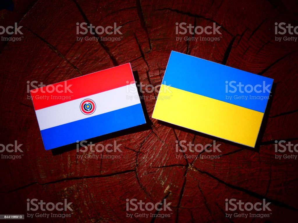Paraguay flag with ukrainian flag on a tree stump isolated stock flag paraguayan flag sign symbol ukrainian flag buycottarizona