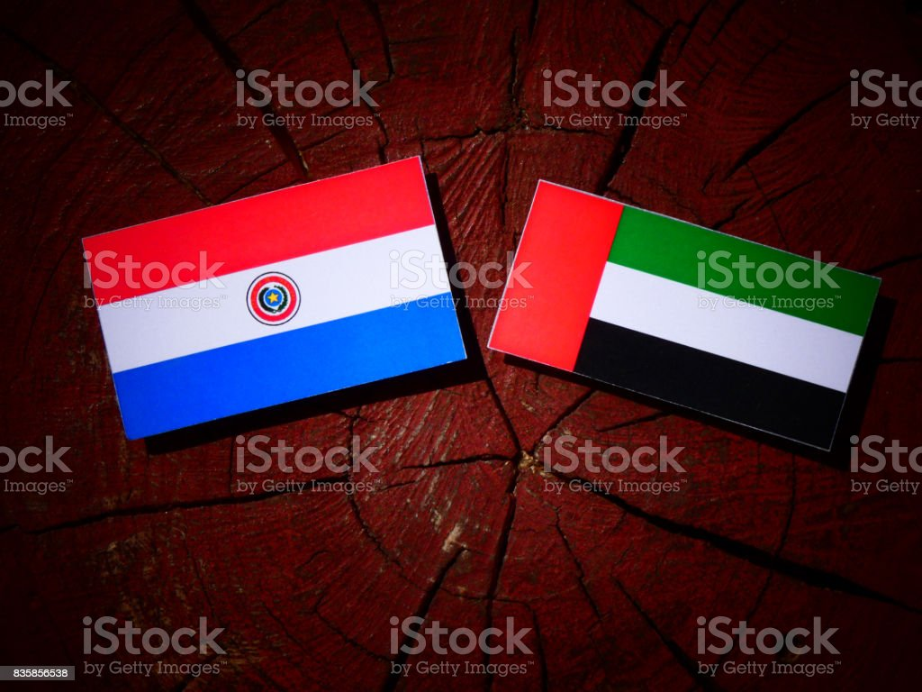 Paraguay flag with united arab emirates flag on a tree stump flag paraguayan flag sign symbol united arab emirates flag buycottarizona