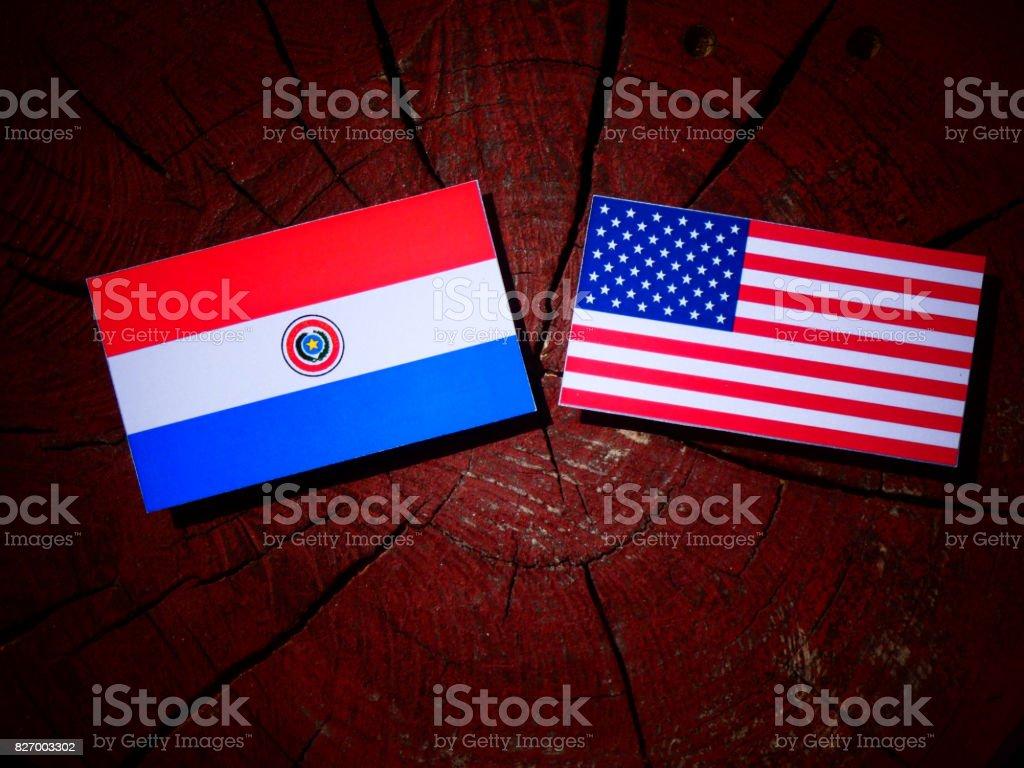 Bandera de Paraguay con los E.e.u.u. bandera en un tocón de árbol aislado - foto de stock