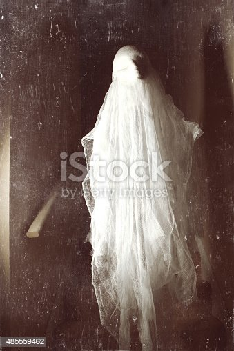 istock Paranormal Ghost Photo 485559462