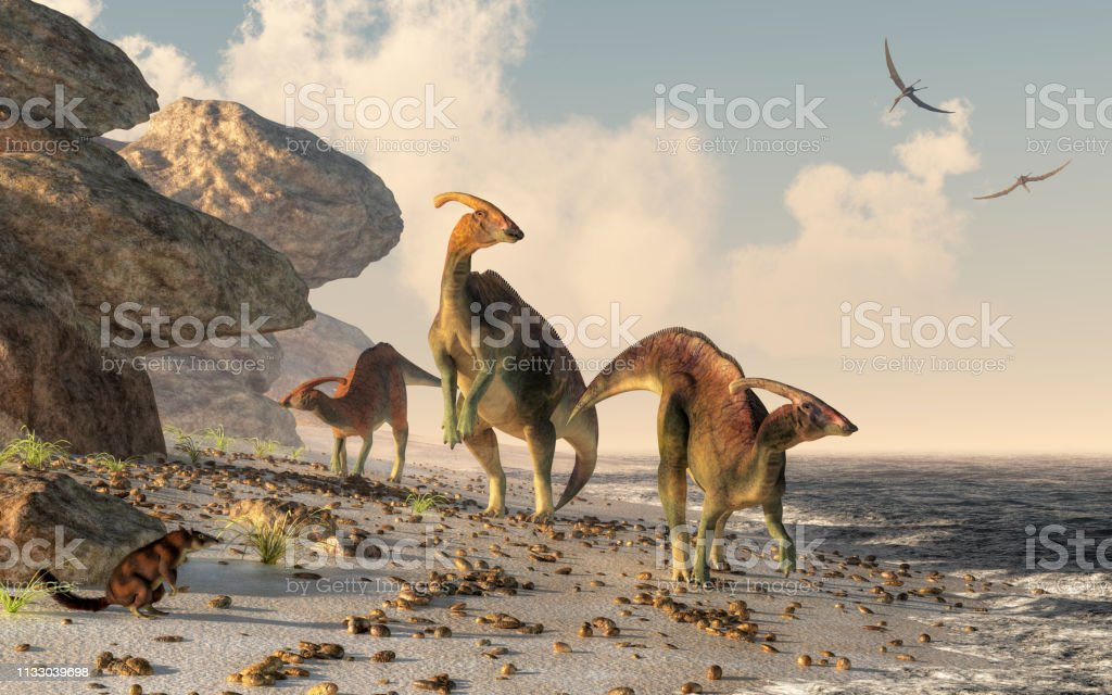 Parasaurolophus on a Beach Three parasaurolophus stand on a rock beach.  Pterasaurs fly over head and a small mammal watches the dinosaurs as they meander along the water's edge. 3DRendering Ancient Stock Photo