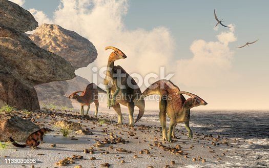 Three parasaurolophus stand on a rock beach.  Pterasaurs fly over head and a small mammal watches the dinosaurs as they meander along the water's edge. 3DRendering
