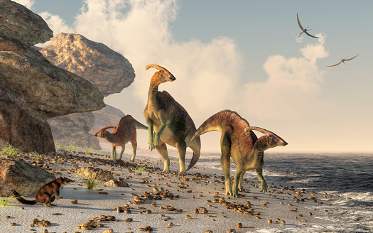 Parasaurolophus On A Beach Stock Photo - Download Image Now
