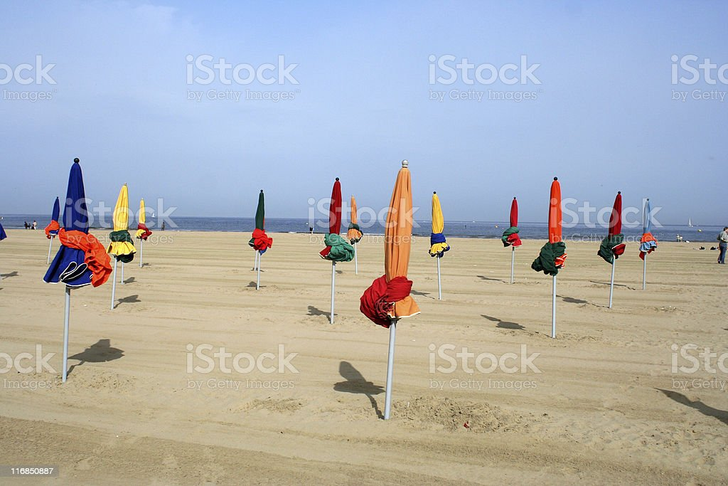 Parasols on a Beach royalty-free stock photo