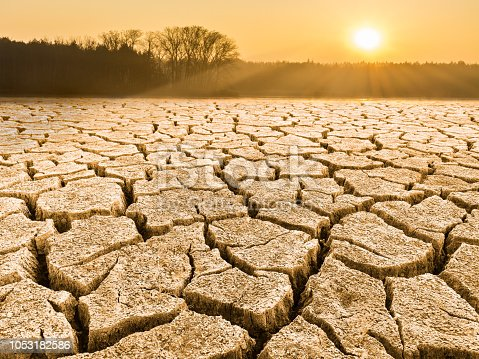 Close-up of drought in a sunlit waterless nature. View of split ground, forest, sky and glowing sun in a background. Sunshine. Idea of dryness, ecology, global warming, climate changes, extreme weather, agricultural subsidy