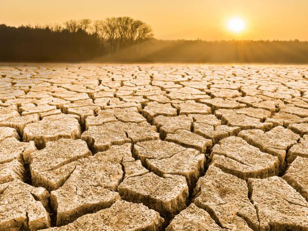 在日出的景觀乾燥開裂的土壤 - 口渴 個照片及圖片檔