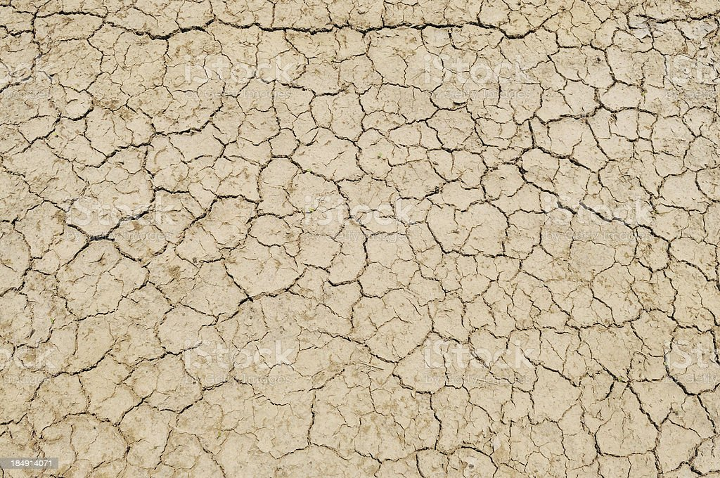 Parched Earth - Soil Conservation, Drought, Erosion stock photo