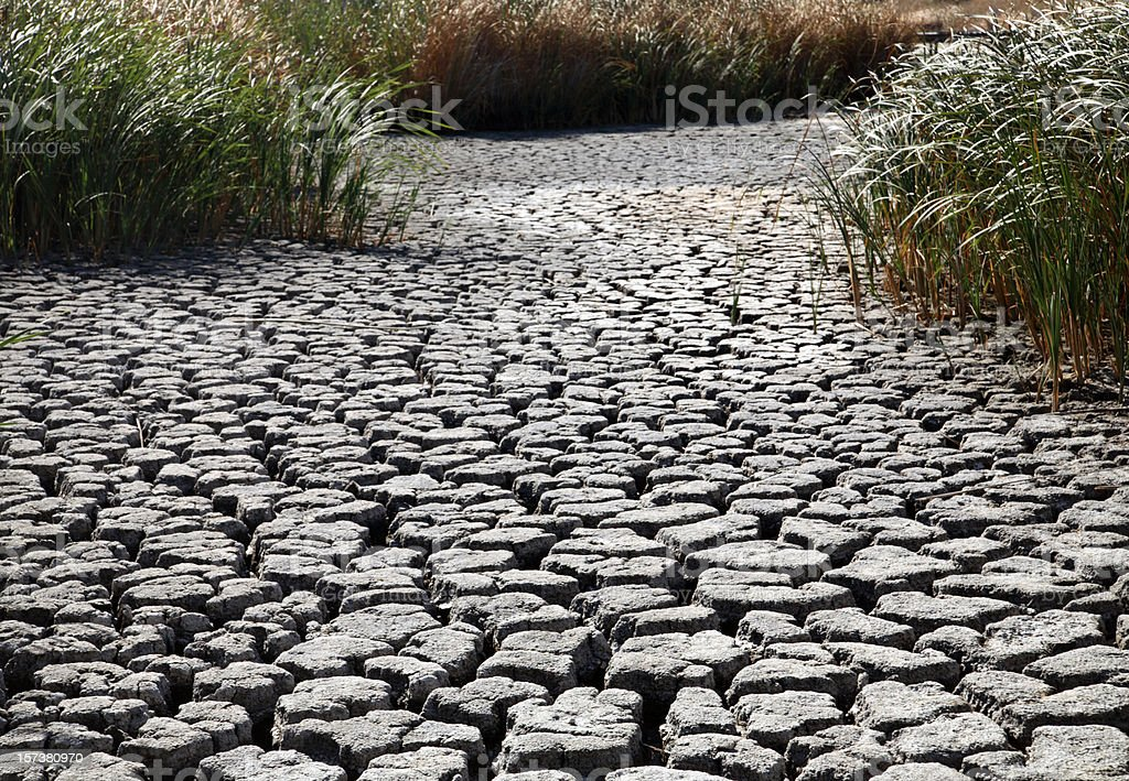 Parched earth with cracked riverbed stock photo