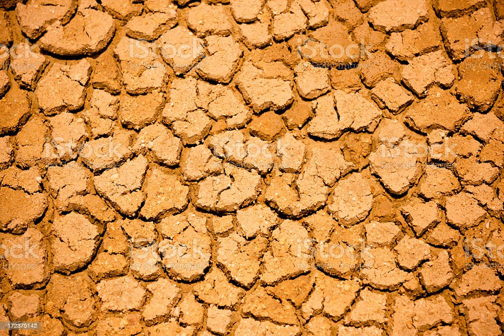 Parched ground royalty-free stock photo