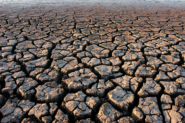 Parched land stock photo