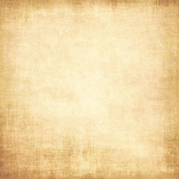 Parchment texture background Old paper textured background. Blank sheet of ancient parchment. papyrus paper stock pictures, royalty-free photos & images