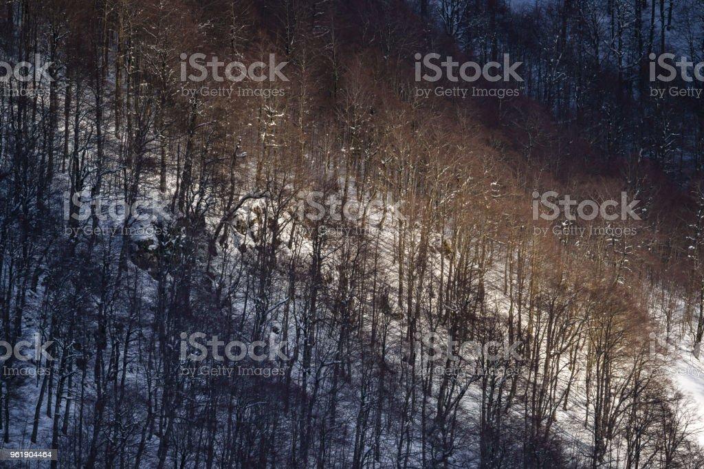 Parco nazionale abruzzo e molise 7 stock photo