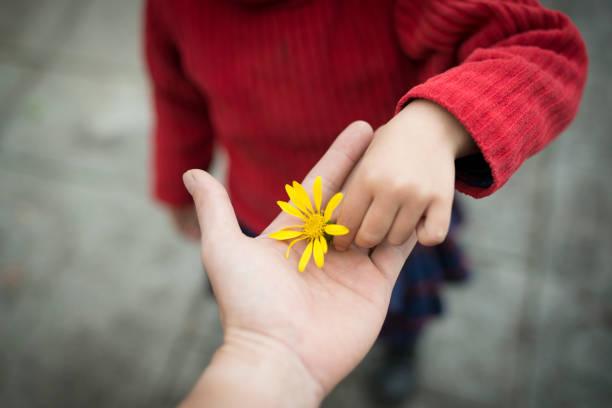 Parent and child handing yellow flower stock photo