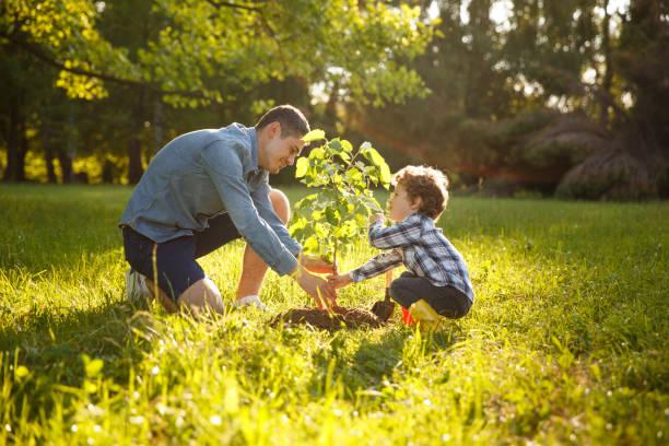 Parent and child planting tree picture id815091350?b=1&k=6&m=815091350&s=612x612&w=0&h=lljqjvzszitmzpumyvmhp q7imu b2xfikkoplx0tgg=