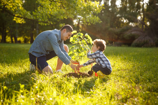 parent and child planting tree - trees stock photos and pictures