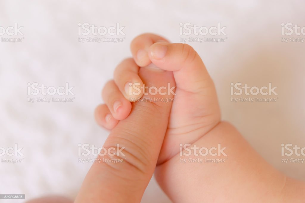 Parents and baby's hands stock photo